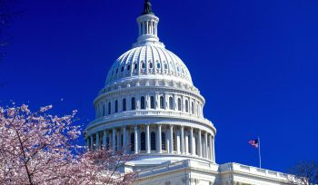 4228492-united-states-capitol-normal
